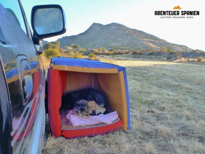 Zwei Hunde - zwei Crashpads - eine Hütte!