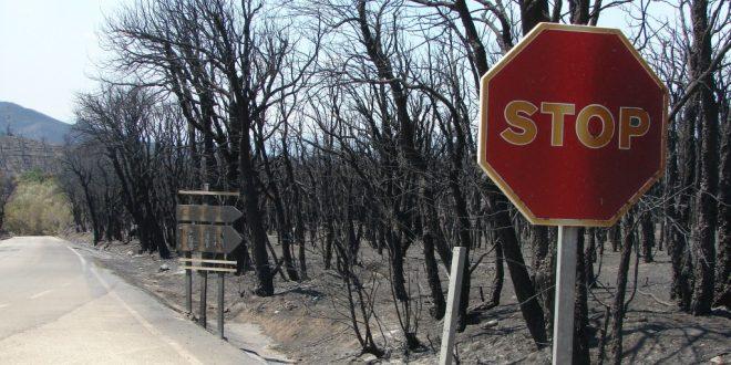 Oft unterschätzt: Die Waldbrandgefahr in Spanien
