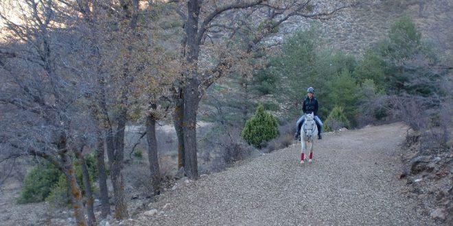 Auf vier Hufen durch die Sierra de Albarracín