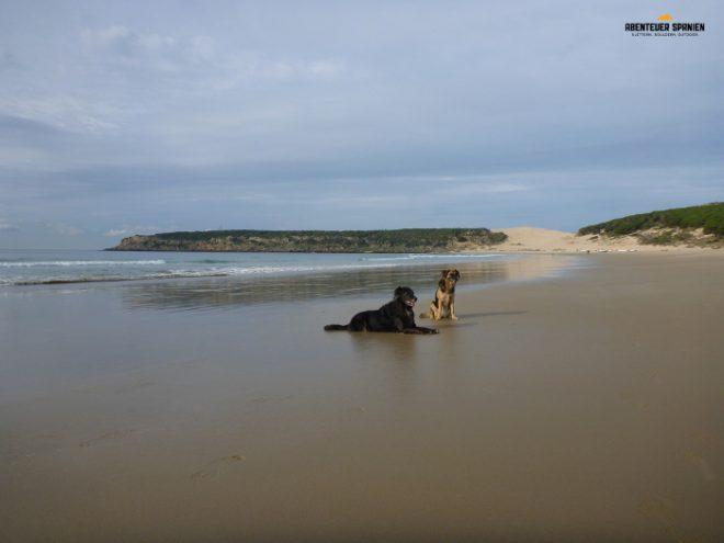 Luna und Jule am Strand von Bolonia.