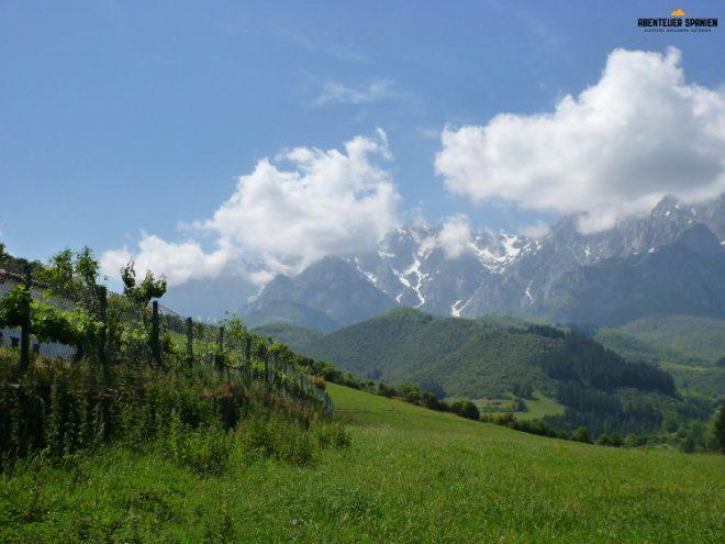 Ein traumhafter Ausblick auf die Picos de Europa