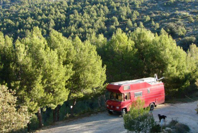 Horst im Grünen bei Alicante