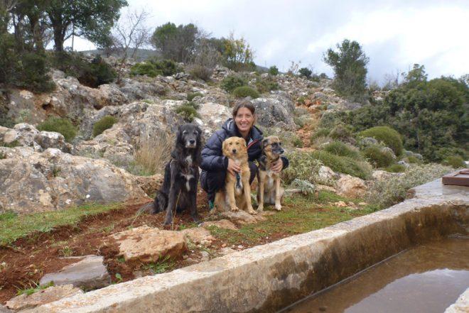 gruppenfoto hunde mensch - Nima Ashoff
