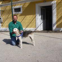 So klappt das Überwintern in Griechenland, Teil 2