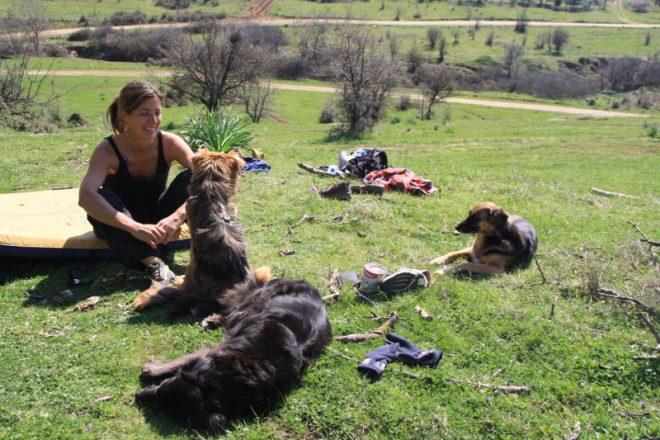 Früher hätte ich mir nicht vorstellen können, mit meinen Hunden nach Südeuropa zu reisen