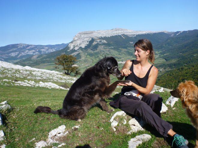 Mit altem Hund auf Reisen, Teil 1