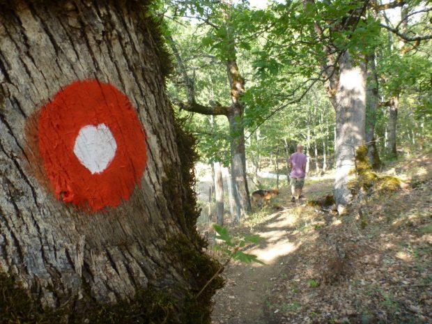 Reisen durch Nordgriechenland: wandern, klettern und mehr