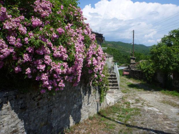 Rundreise durch den Epirus - meine Highlights